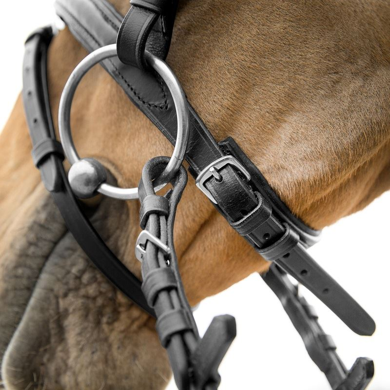 Product photo for HZ Athena Snaffle Bridle